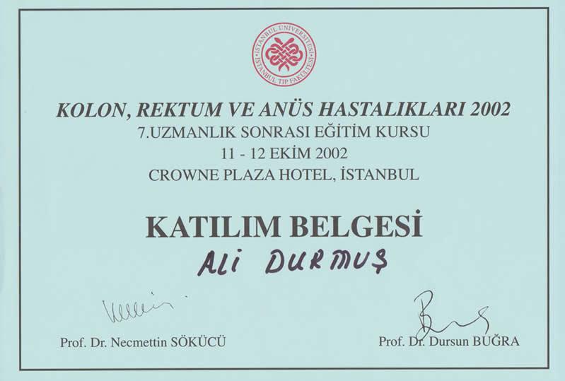 kolon katılım belgesi